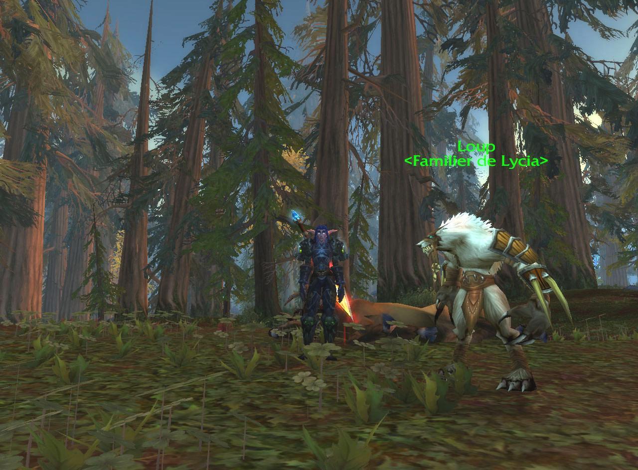 Screenshot réalisé par Lycia.