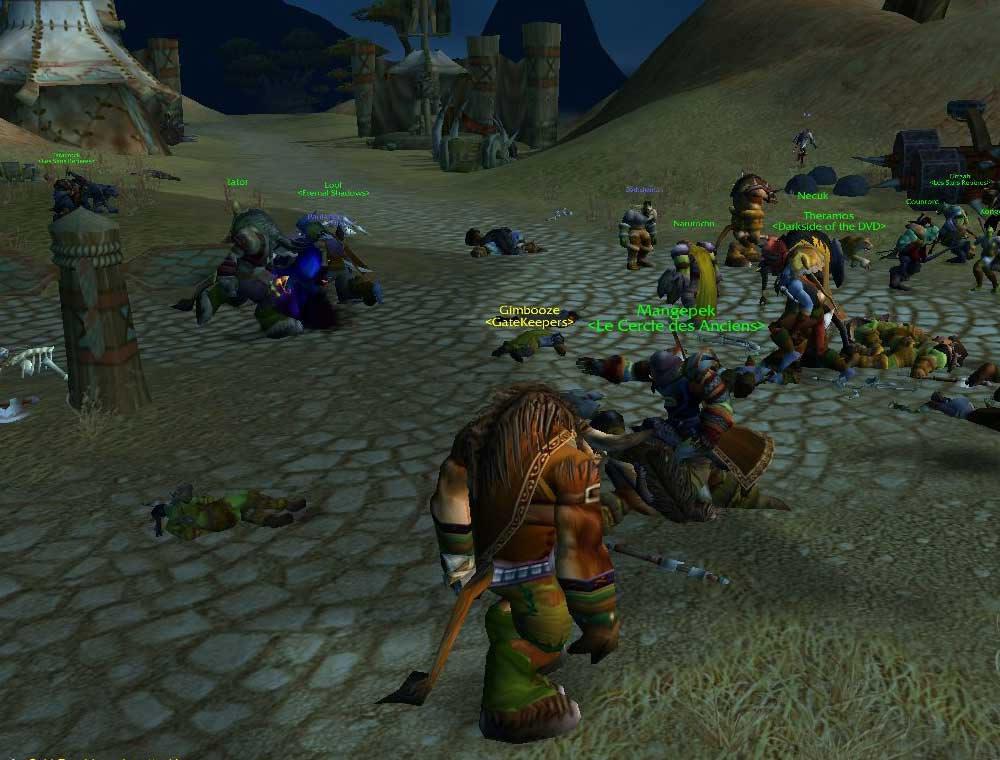 Raid de l'Alliance sur la Horde.  Merci à Nelth pour le screenshot.