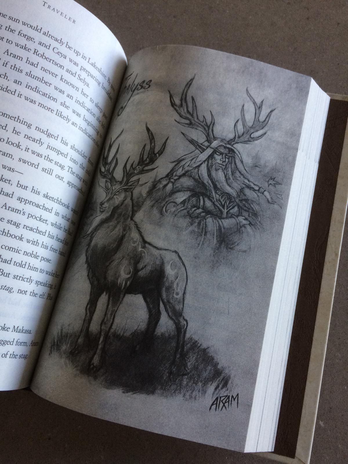 Photo du livre World of Warcraft: Traveler.