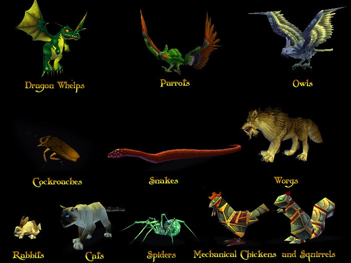 how to get a pet in wow