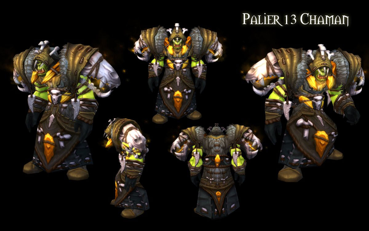 Patch 4.3 : T13 Chaman.