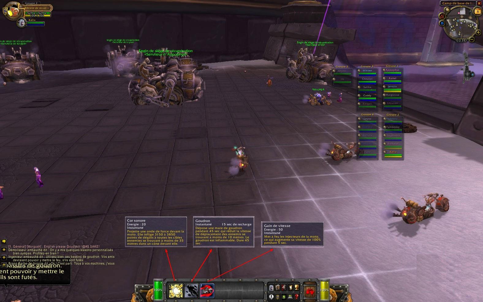 Screenshot réalisé par la guilde Caelestis Concilium sur Ysondre.